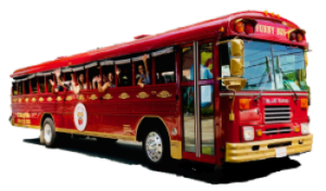 Bus profile, clear background